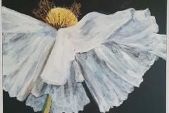 Californian Poppy I