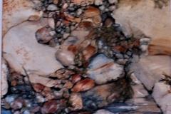 Tidal Gems